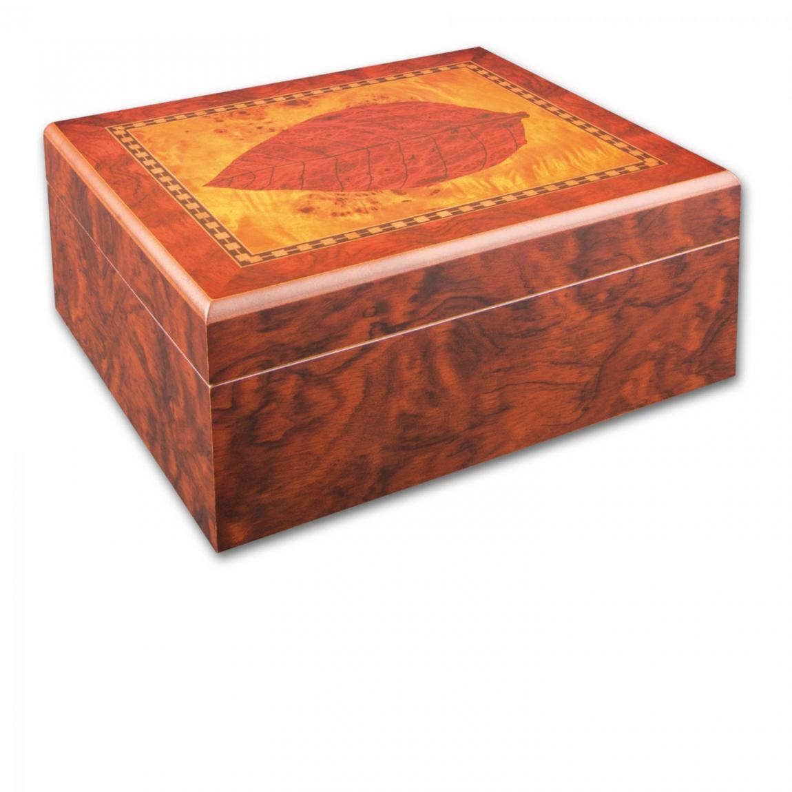 Humidor-Schatulle mit Tabakblatt-Dekor - für 30-40 Zigarren
